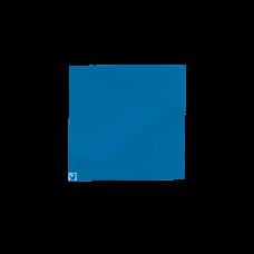 Placa transport alcool (culoare albastru), 300*300mm