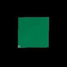 Placa transport panificatie (culoare verde), 300*300mm
